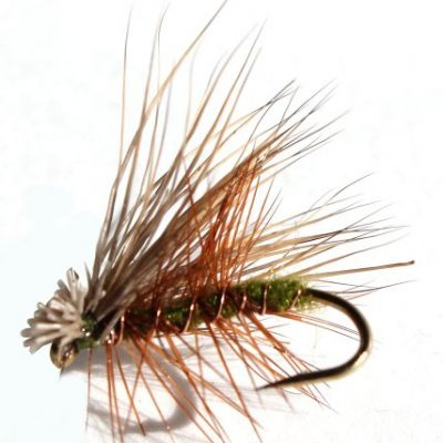 Flies Direct Elk Hare Caddis Olive Assortment Trout Fishing Flies (1-Dozen)