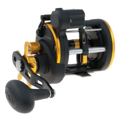 Penn Squall 20LC Level Wind Trolling Reels